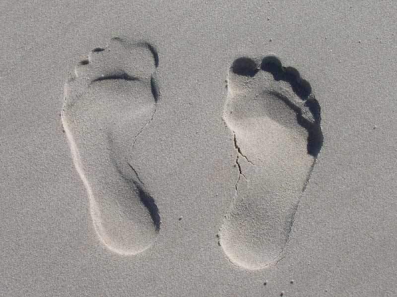 patologie del piede