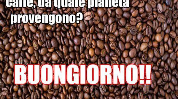 chicchi-di-caffe